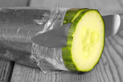 Cucumber slicing Stock Photography