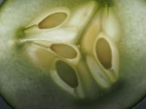 The cucumber in the slit clearance. Expose the seeds of the frui. T. Macro Stock Images