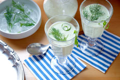 Cucumber soup - cold served meal Stock Photography