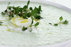 Cucumber Soup / Gazpacho royalty free stock image