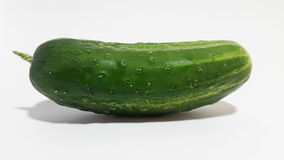 Cucumber. In studio royalty free stock photos