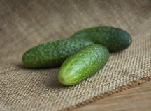 Cucumber. Three cucumber on the table stock images