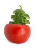 Cucumber and tomato Royalty Free Stock Photography