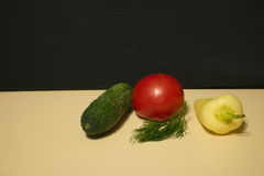 Cucumber tomato bell pepper fennel royalty free stock photos