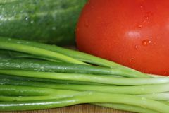 Cucumber, tomato and green onions stock photos