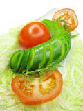 Cucumber and tomato on lettuce Royalty Free Stock Images