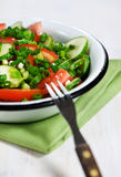 Cucumber, tomatoes and green onion salad Stock Photo