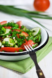 Cucumber, tomatoes and green onion salad Royalty Free Stock Image