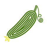 Cucumber. Vector illustration isolated on white background Royalty Free Stock Photography
