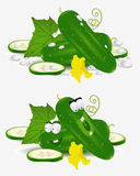 Cucumber vegetable character Stock Images