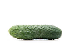Cucumber. Vegetable isolated on white royalty free stock photos