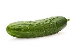 Cucumber vegetable on white Stock Images