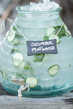 Cucumber water jar royalty free stock image