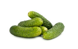 Cucumber on white background. Cucumber isolated on white background stock images