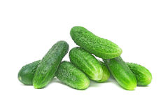 Cucumber on white background. Bunch of fresh cucumbers closeup on white background Royalty Free Stock Photos