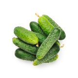 Cucumber on white background Stock Photos
