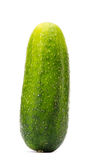Cucumber on White Stock Photo