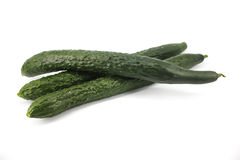 Cucumber. On white background royalty free stock images