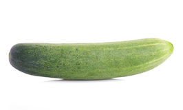 Cucumber on white background. Stock Images