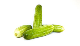 Cucumber with white background. For raw material Royalty Free Stock Photography