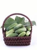 Cucumbers Stock Photo
