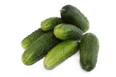 Cucumbers. Green cucumbers isolated on white Royalty Free Stock Images