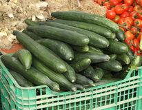 Cucumbers. On display in an open-air market in Spain Stock Photography