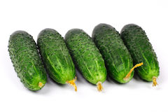 Free Cucumbers Royalty Free Stock Images - 1561549
