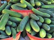 Cucumbers Stock Photos
