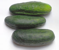 Cucumbers. Three cucumbers Stock Images