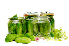 Cucumbers. Preparing of pickled cucumbers in jars Royalty Free Stock Photos
