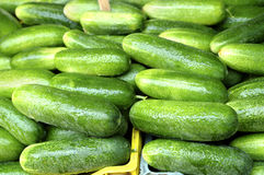 Cucumbers Stock Photos