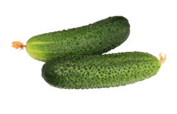 Free Cucumbers Stock Photography - 29832702