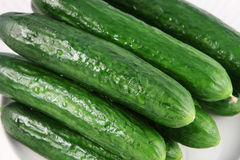 Cucumbers. Fresh wet cucumbers on a white plate royalty free stock photography