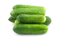 Cucumbers. Green cucumbers isolated on white Royalty Free Stock Photo
