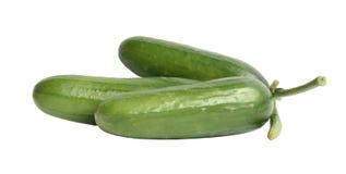 Cucumbers. Fresh cucumbers on a white background Stock Photo