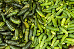Cucumbers at asian market Stock Images