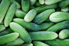 Cucumbers background Stock Photo
