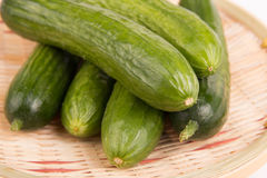 Cucumbers in basket. Some fresh cucumbers in basket Royalty Free Stock Images