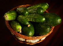 Cucumbers on black Stock Images