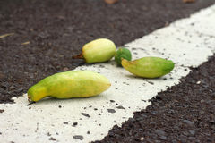 Cucumbers on a black street. Stock Photo