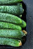 Cucumbers in a box. On a black background Stock Images