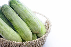 Cucumbers in a box. Fresh cucumbers in a box on white Royalty Free Stock Photos