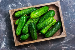 Cucumbers. In box and on a table Royalty Free Stock Image