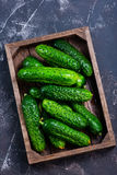 Cucumbers. In box and on a table Royalty Free Stock Images