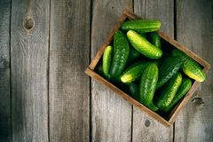 Cucumbers in a box on wooden background. Cucumbers in a box on a wooden background Stock Images