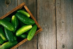 Cucumbers in a box on wooden background. Cucumbers in a box on a wooden background Royalty Free Stock Photography