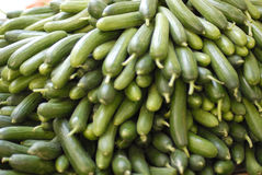 Cucumbers bunched together for sale Stock Images