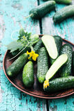 Cucumbers in a ceramic plate Stock Photography