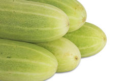 Cucumbers. Royalty Free Stock Photography